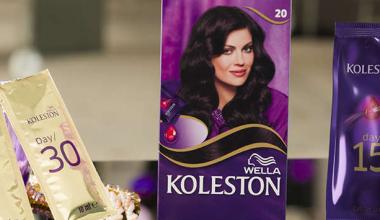 2019-2020 Koleston Renk Kataloğu