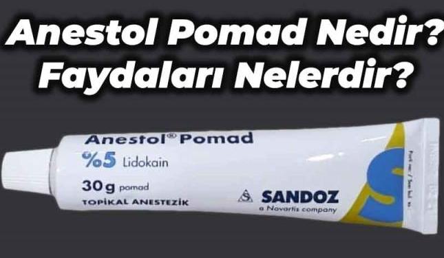 Anestol Pomad(Krem) Niçin Kullanılır, Fiyatı Nedir, Kullanıcı Yorumları?